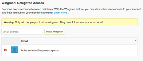 delegated_access_wingman